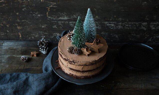 Winter Wonderland Naked Cake